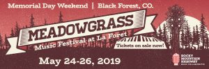 MeadowGrass Music Festival – 2019 Lineup & Activities